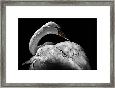 Serenity Framed Print by Debra and Dave Vanderlaan