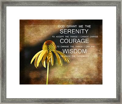 Serenity Echinaca Flower Framed Print by P S