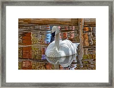 Serenity In Color Framed Print by Rick Lewis