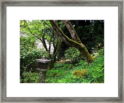 Serenity In Nature Framed Print