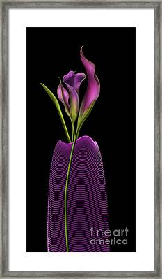 Serenity In Purple Framed Print by Barbara Milton