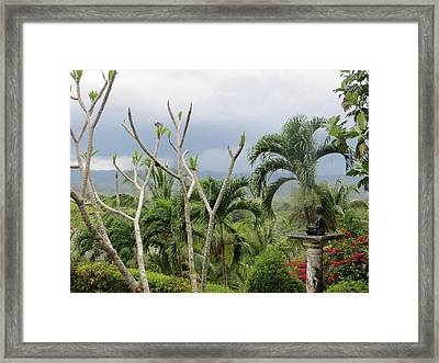 Meditation Framed Print by Jean Marie Maggi