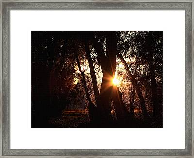 Serenity Framed Print by Jennifer Muller