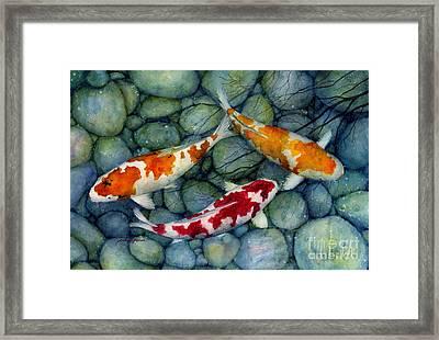 Serenity Koi Framed Print by Hailey E Herrera