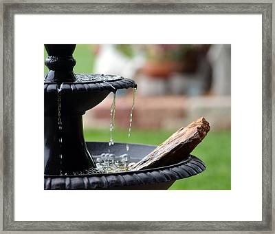 Framed Print featuring the photograph Serenity by Linda Cox