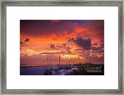 Serenity Framed Print by Marvin Spates
