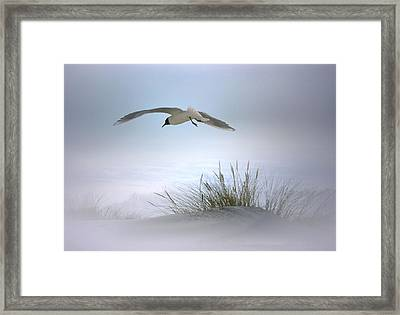 Framed Print featuring the digital art Serenity by Nina Bradica