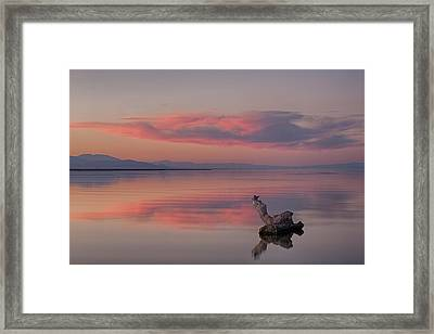 Serenity Now Framed Print by Peter Tellone
