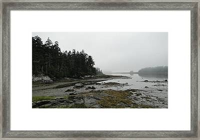 Serenity On A Foggy Afternoon In Maine Framed Print