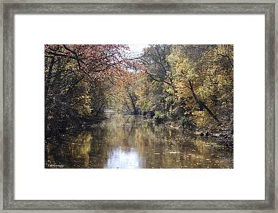 Serenity River Framed Print by Nancy Edwards