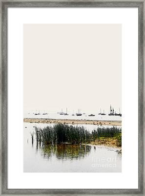 Serenity  - Santa Barbara Framed Print