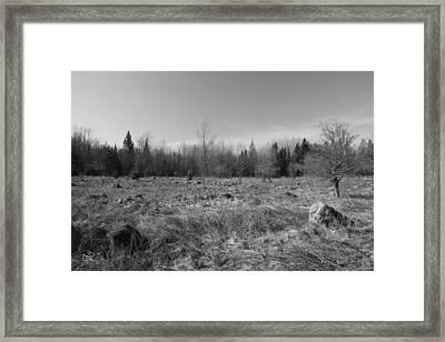 Serenity Framed Print by Sarah Klessig