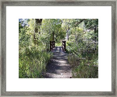 Serenity Framed Print by Sheri Keith