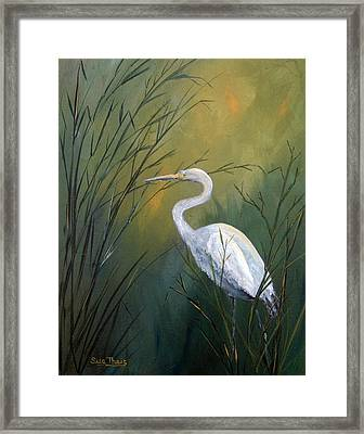Serenity Framed Print by Suzanne Theis