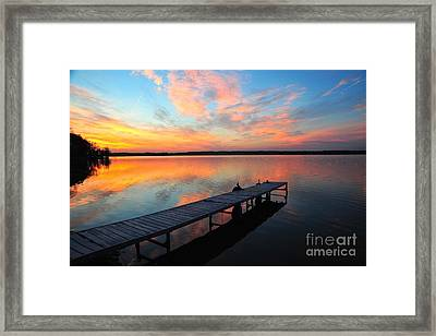 Framed Print featuring the photograph Serenity by Terri Gostola