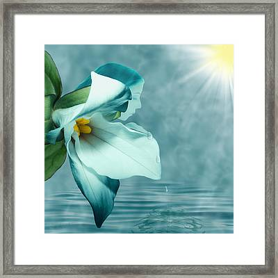 Serenity Framed Print by Torie Tiffany
