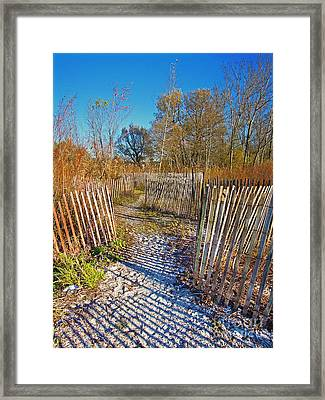 Serenity Trail.... Framed Print