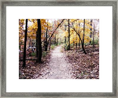 Framed Print featuring the photograph Serenity Walk In The Woods by Peggy Franz
