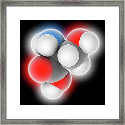 Serine Molecule Framed Print