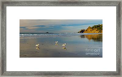 Serinity At The Coast Framed Print