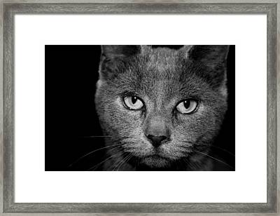 Seriously Framed Print