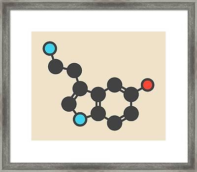 Serotonin Neurotransmitter Molecule Framed Print by Molekuul
