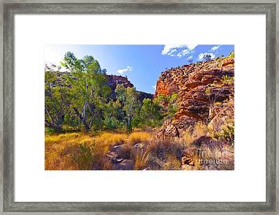 Serpentine Creek  Framed Print by Bill  Robinson