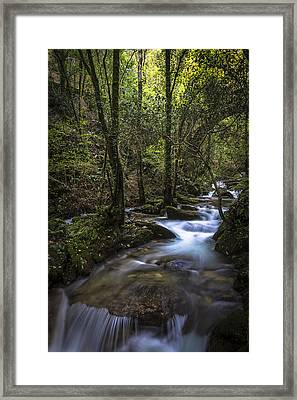 Framed Print featuring the photograph Sesin Stream Near Caaveiro by Pablo Avanzini