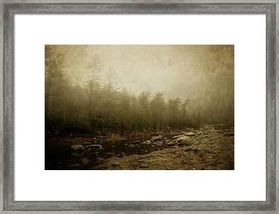 Set In Fog Framed Print by Kathy Jennings