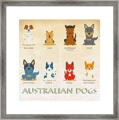 Set Of Australian Dogs Framed Print by Don Kuing