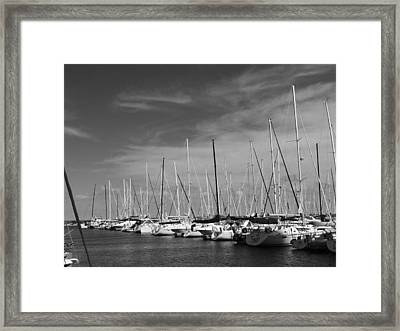 Set Sail Framed Print