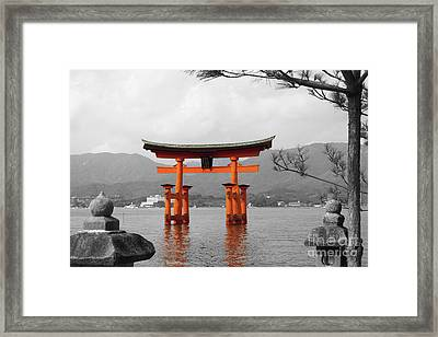 Seto Shrine Framed Print by Cassandra Buckley