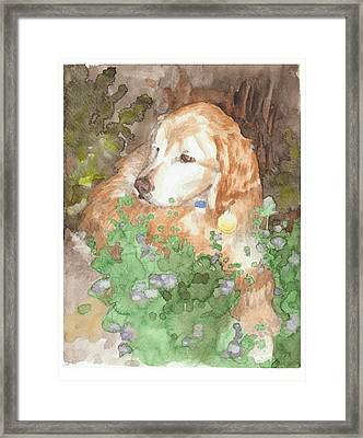 Setter Dog In Flowers Watercolor Portrait Framed Print by Mike Theuer