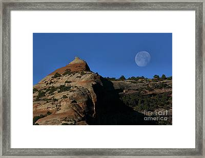 Setting Moon Framed Print by Steven Reed