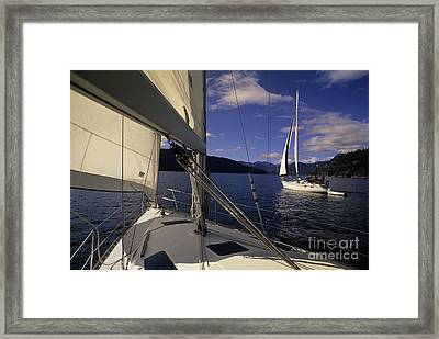 Setting Sail Framed Print by Bob Christopher