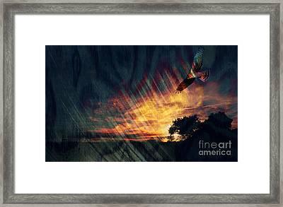Setting Sun Framed Print by Robert Ball