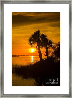 Settting Sun Framed Print by Marvin Spates