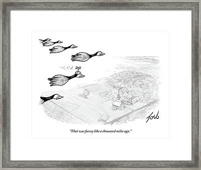 Several Geese Fly In A V-formation Framed Print by Tom Toro
