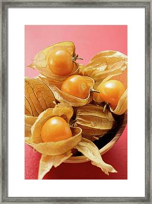 Several Physalis In Wooden Bowl Framed Print