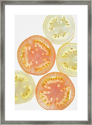 Several Slices Of Tomato From Above Framed Print