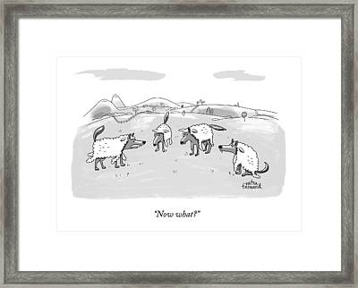 Several Wolves In Sheep's Clothing Converge Framed Print