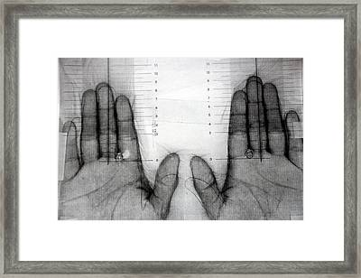 Sexual Orientation Research Framed Print by Thierry Berrod, Mona Lisa Production