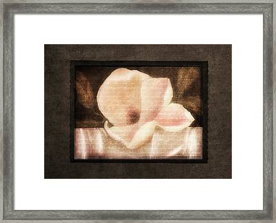Shabby Vintage Magnolia Framed Print