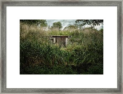 Shack In The Park Framed Print by Joan Carroll