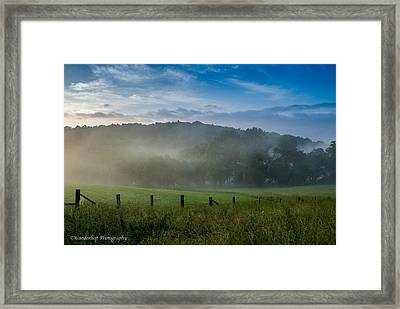 Shaconage 2nd In Series Framed Print by Paul Herrmann