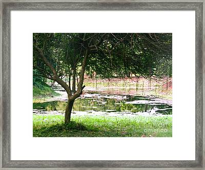 Shade Of Greens Framed Print by Sapna Mondol