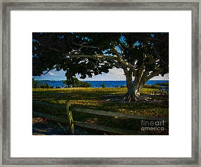 Shade Tree In The Park Framed Print by Eric Geschwindner