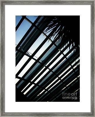 Shaded Framed Print by Alina Davis