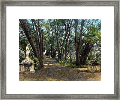 Shaded Path Framed Print