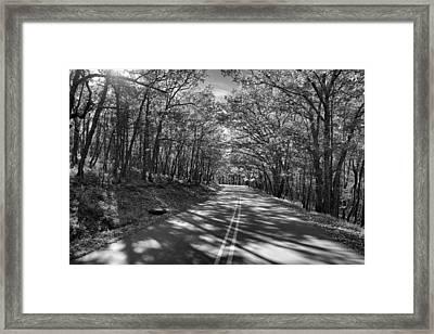 Shaded Rd Bw Framed Print by Patrick M Lynch